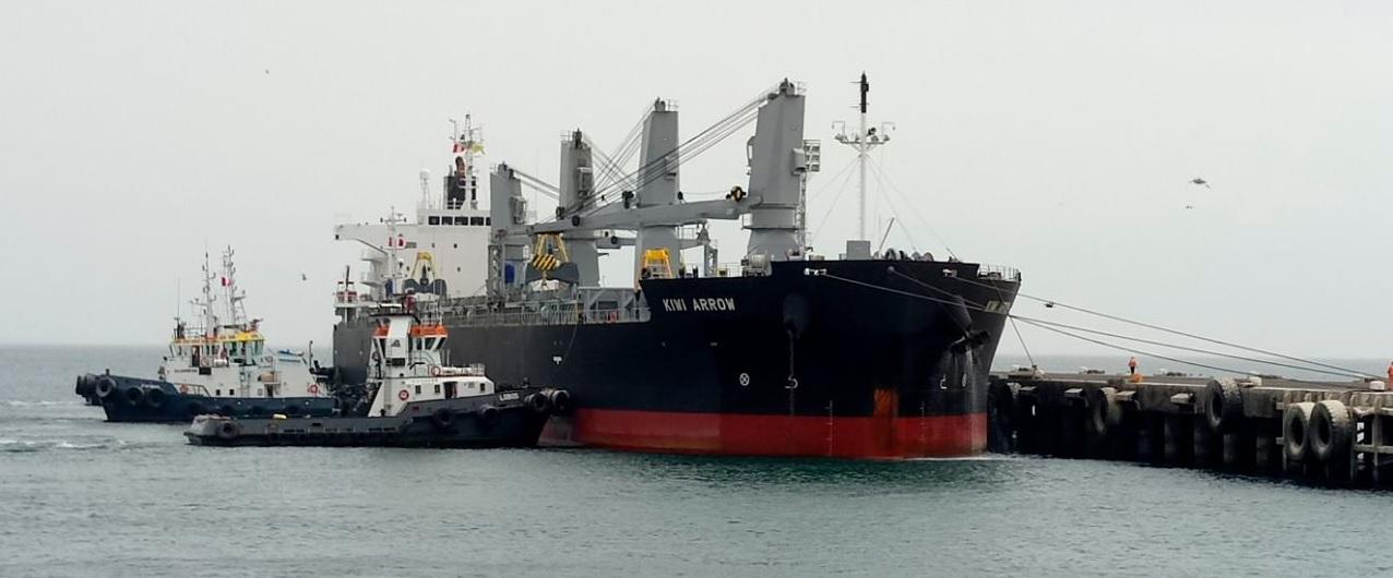 ASP- B espera que en 2019 el puerto de Ilo mueva 100.000 t. de carga boliviana