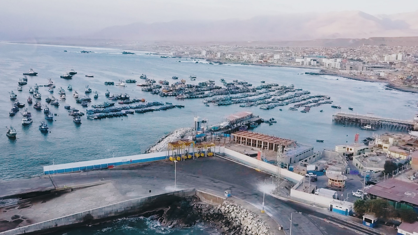Bolivia y Perú perfilan reunión para ampliar movimiento de carga por Ilo